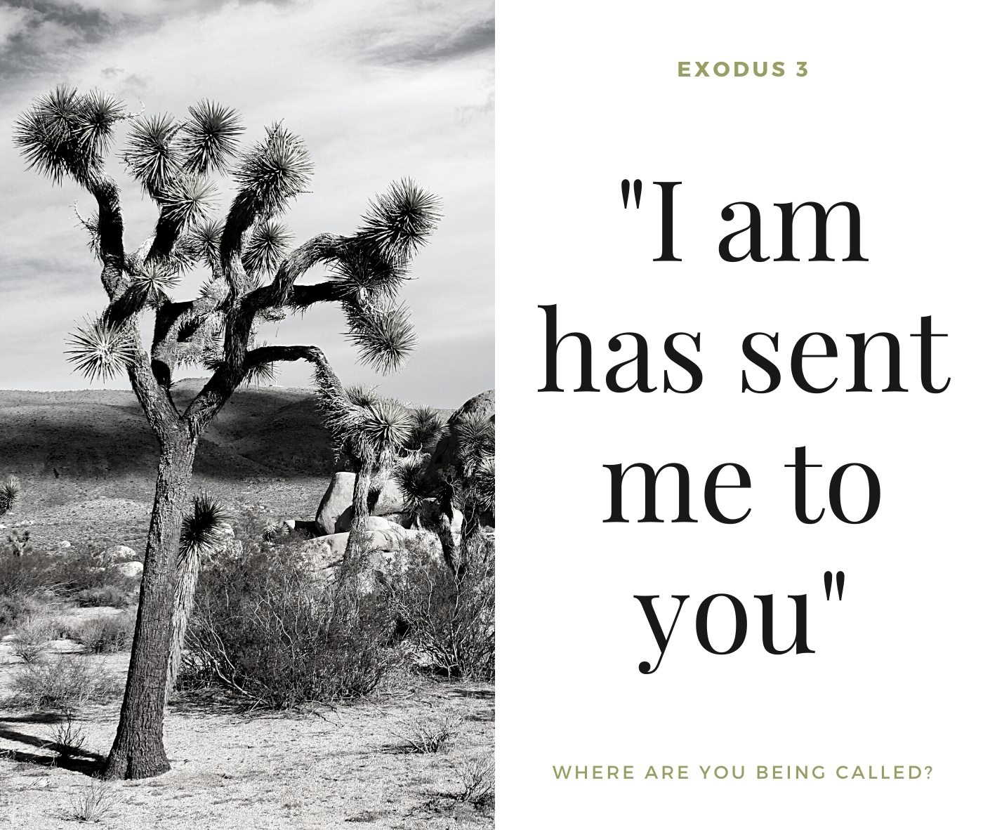 "Midweek Meditation 26th August 2020. ""Exodus 3 - I am has sent me to you - Where are you being called?"""