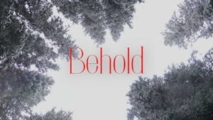 """Worship for 20th December 2020 - Rev Dave Prentice-Hyers. """"Behold"""" Worship for the 4th Sunday of Advent"""