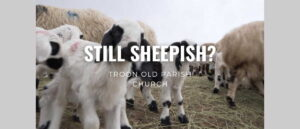 Worship for 25th April 2021. Still Sheepish?